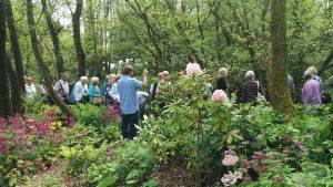 Gardening group 2016-05-27 14.38.32 (2)