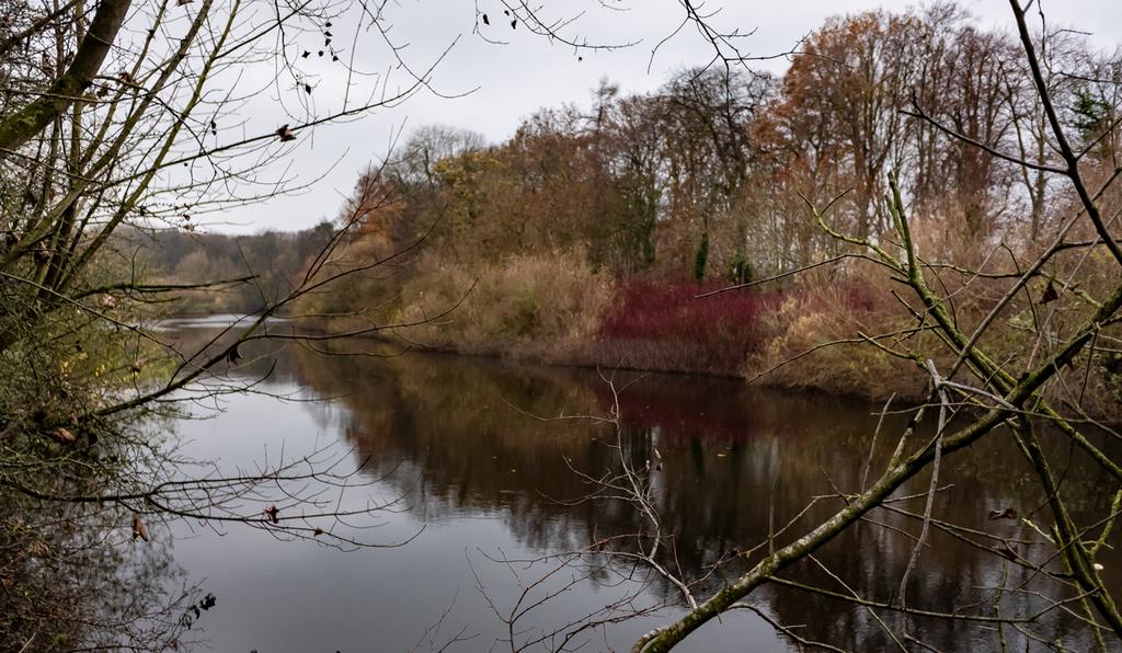 Long Walks in November 2018 – Sandbach and District U3A