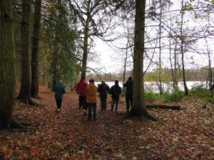 The Group heading off around the mere
