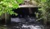 Archimedes Screw well-hidden in the undergrowth